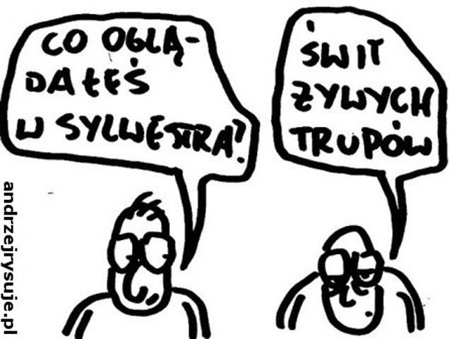 sylwester11