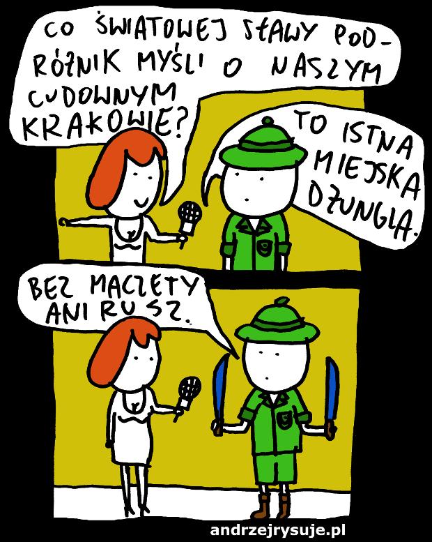 krakow miejska dzungla
