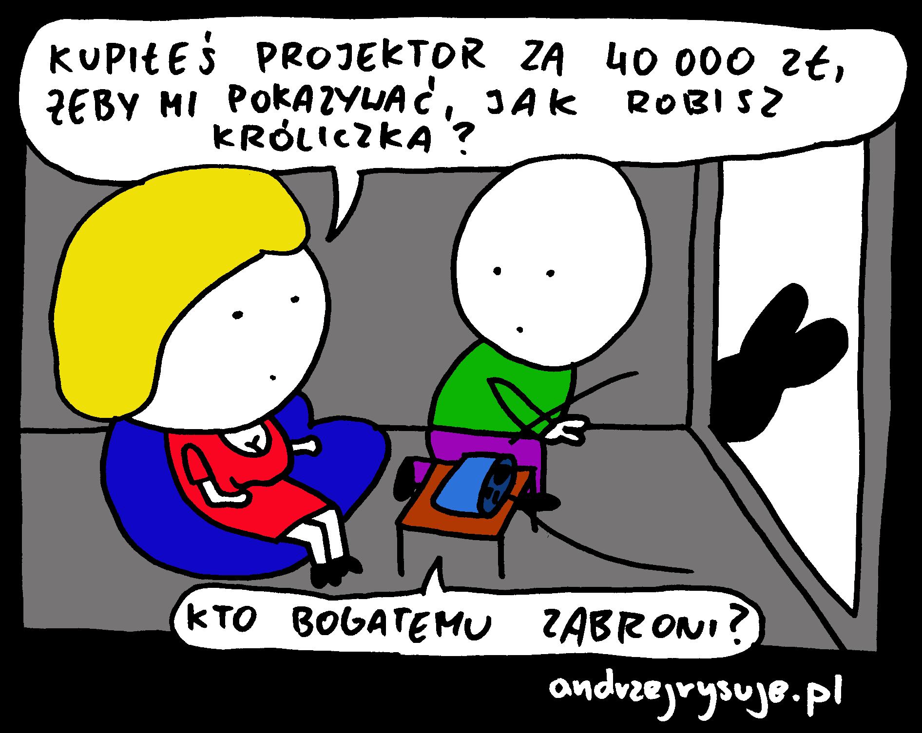 projektor 2