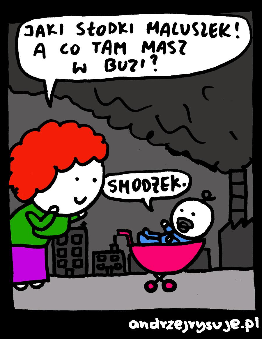 smodzek
